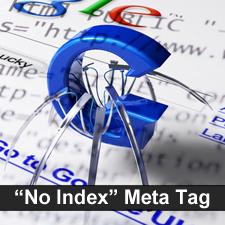 meta tag no index